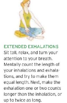 gerakan yoga utk sakt maag 4