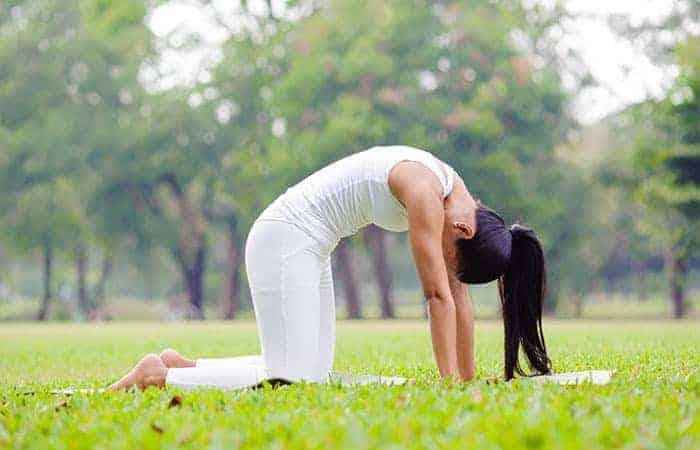 cat yoga pose - memperbaiki postur tubuh