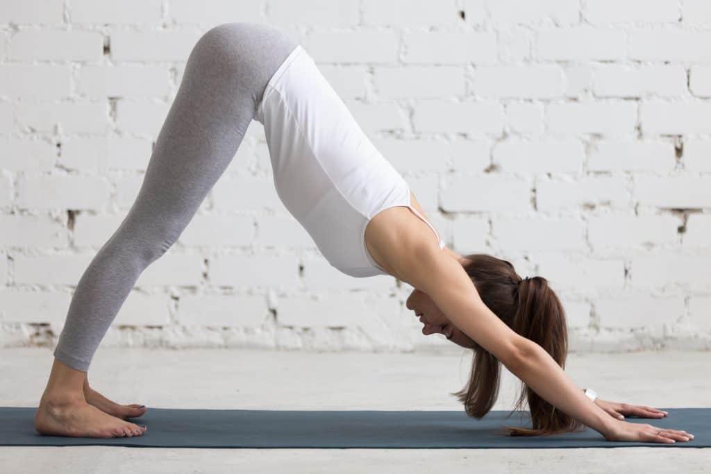 gerakan yoga adha mukha svanasana