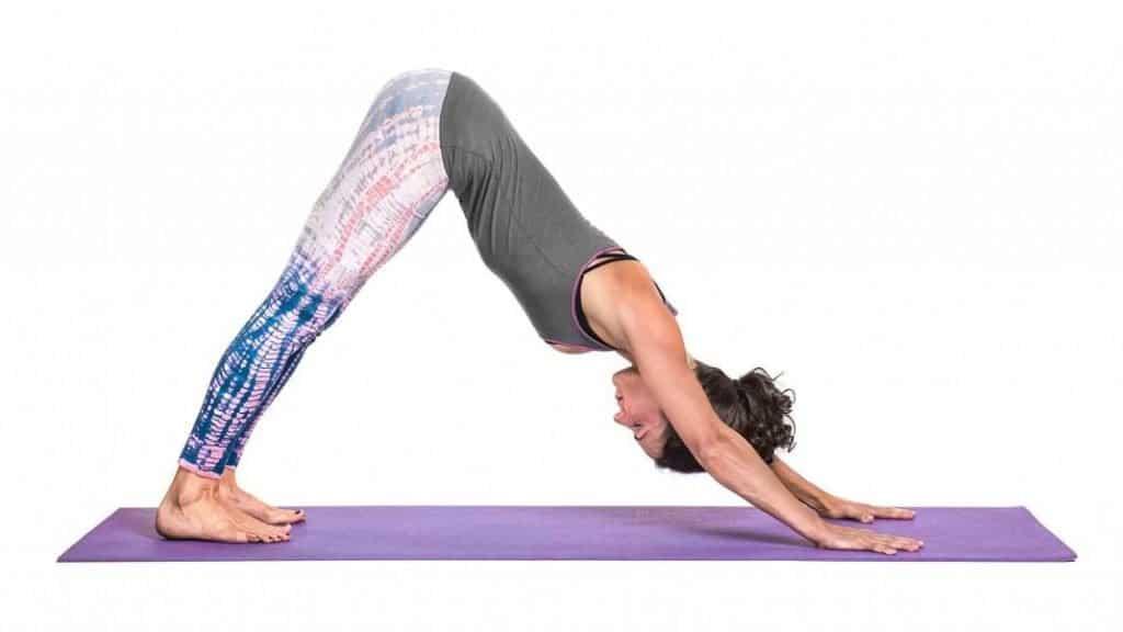 gerakan yoga downward facing dog